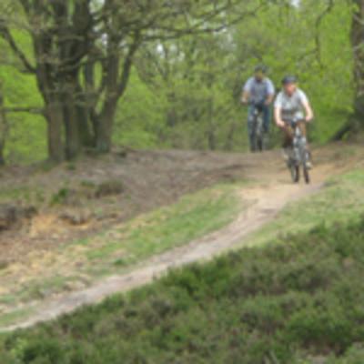 Mountainbike verhuur Dochamps -  La Roche