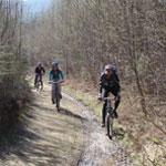 Mountainbike verhuur | Trois-Ponts