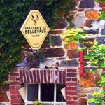 Mountainbiken naar bierbrouwerij Bellevaux